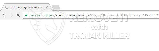 remove Stags.bluekai.com